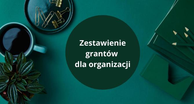grafika do zestawienia grantów dla instytucji