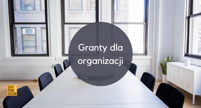granty dla organizacji infografika do artykułu