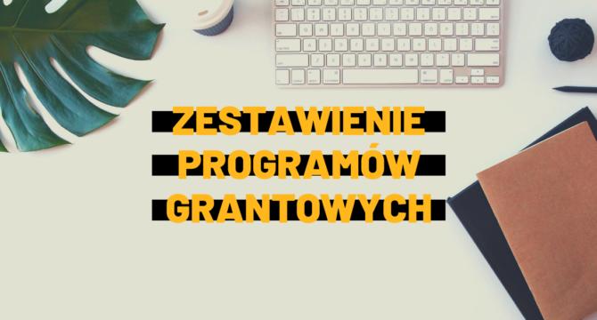 programy grantowe dla organizacji 2021 grafika do artykułu